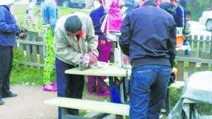 拎虎崽绑孔雀 八达岭野生动物园内与动物合影项目惹争议